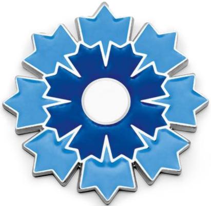 Cet insigne du Bleuet de France rappelle l'uniforme bleu horizon des jeunes recrues.
