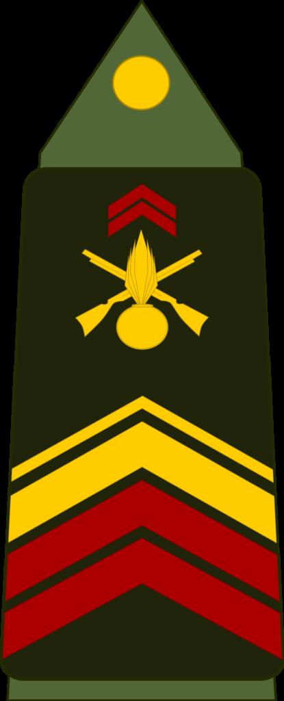 Grade de caporal-chef ou brigadier-chef.