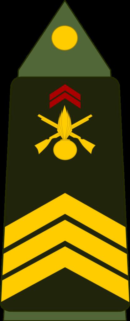 Grade de sergent-chef.