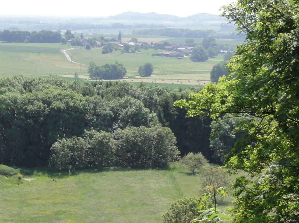 Panorama actuel depuis le mont Saint-Berthaud (Chaumont-Porcien).