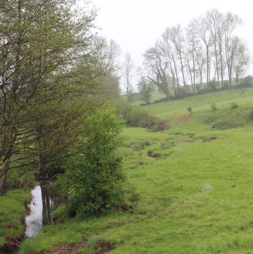 Ruisseau du Moulin Garot (vue générale), repérage des lieux-dits de La Romagne effectué avec monsieur Christian Beltrami le jeudi 13 mai 2021. Crédits photographiques : © 2020 laromagne.info par Marie-Noëlle ESTIEZ BONHOMME.
