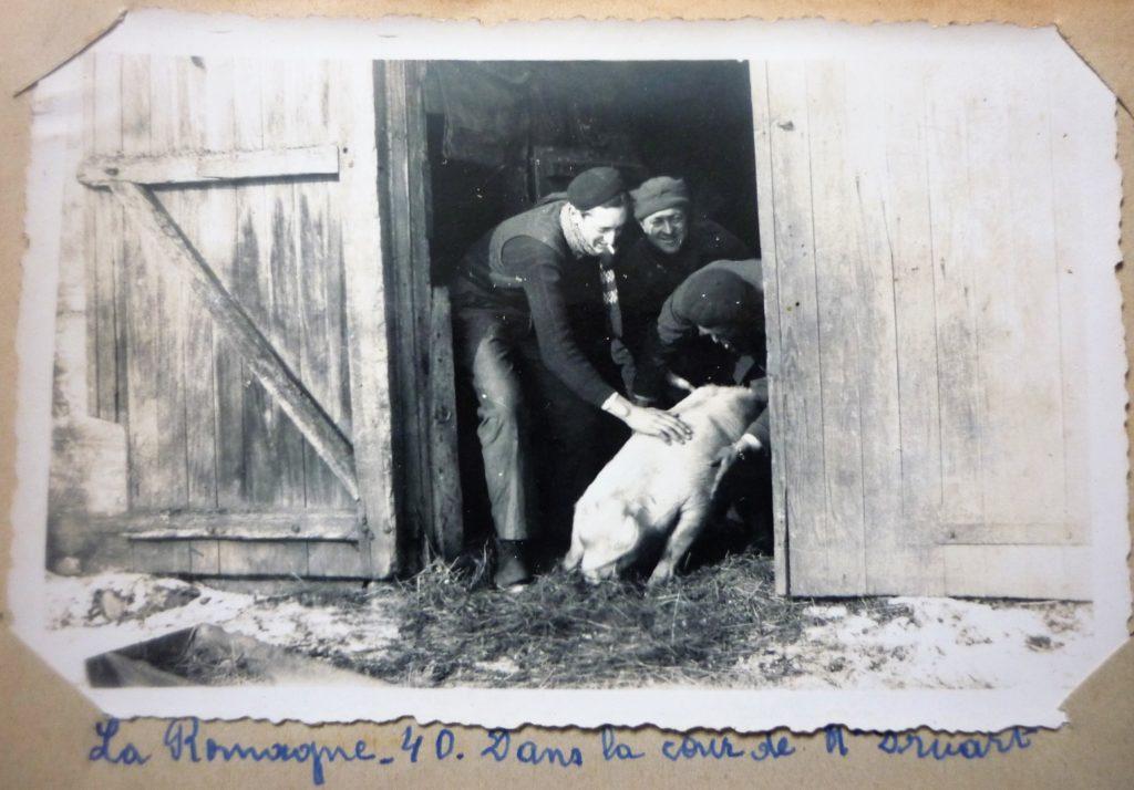 Tuage du cochon dans la cour de monsieur Maurice Druart en 1940  (collection privée, avec l'aimable autorisation de monsieur Pierre Malherbe).