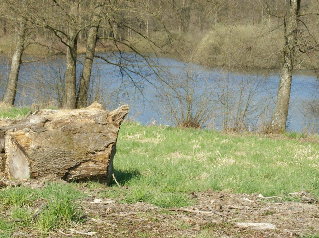 repérage topographique des environs de La Romagne effectué le samedi 10 avril 2010. Crédits photographiques : © 2020 laromagne.info par Marie-Noëlle ESTIEZ BONHOMME.