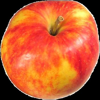 La pomme Rambour d'hiver (très bonne cuite, cru ou à jus) est une variété typique des Ardennes, utilisée pour les rabottes.